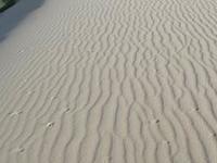Ashdod Sand Dune