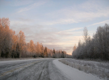 Parks Highway To Fairbanks