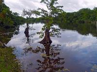 Punta Izopo Wildlife Refuge