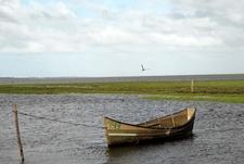Parque Nacional Lagoa Do Peixe