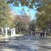 Paseo De Recoletos