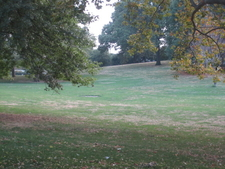 Limited-use Passive Lawn At Riverside Park