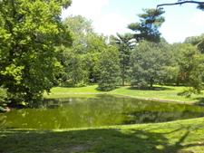 Pastorius Park