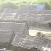 Adivasi Colony