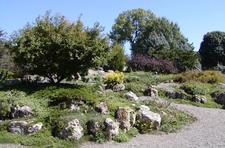 Peace Garden At North Of Arboretum