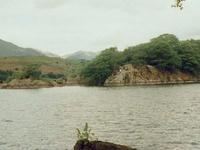 Peel Island