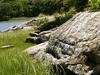 Hunter Island