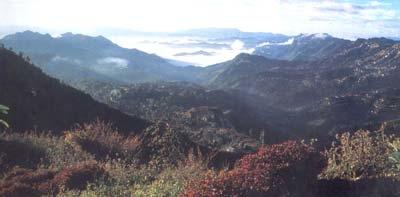 Phawngpui Blue Mountain National Park