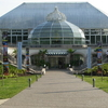 Phipps Conservatory & Botanical Gardens