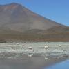 Cerro Araral