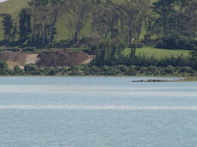 Pinnacle  Hill On  Puketutu  Island