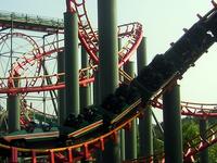 Anaconda Roller Coaster