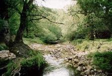 National Park Of Abruzzo