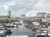 Poplar Dock