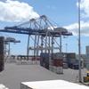 Ports Of Auckland Fergusson Wharf