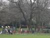 Princes Park Playground