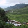 View Of Puncak Area