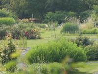 University Of Helsinki Botanical Garden