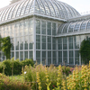University Of Helsinki Botanical Garden