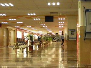 Lic. Gustavo Diaz Ordaz International Airport