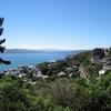Quartier Mount Victoria - Wellington NZ
