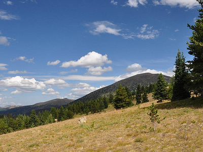 Quartz Lakes Loop Trail At Glacier - Montana - USA