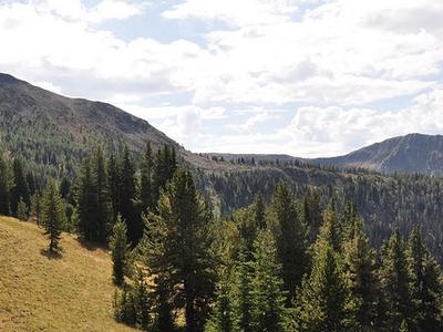 Quartz Lakes Loop Trail Views - Glacier - Montana - USA
