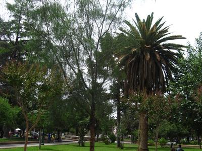 Square Of Cafayate