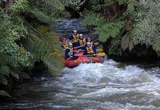 Rafting - Okere Falls Scenic Reserve NZ