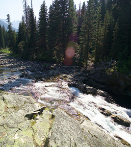 Rainbow Falls Trail At Glacier - Montana - USA