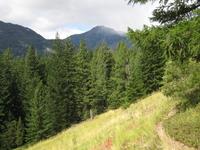 Rainbow Loop Trail