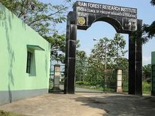 Rain Forest Research Institute