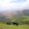 Ramakkalmedu Valley