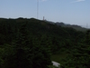 Ramea  Trail