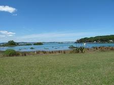 Rangitoto Island - Coastal View - Auckland NZ