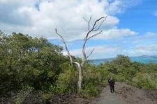 Rangitoto Island Scenic Reserve - Auckland NZ
