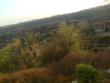Ranthambore Fort Inside National Park