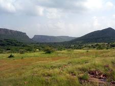 Ranthambore National Park Landscape