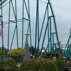 Raptor From The Midway