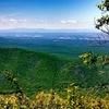 Ravens Roost - Blue Ridge Parkway - Virginia