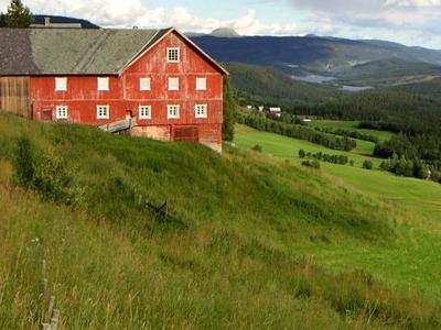 At Røyne