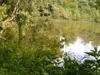 Rácalmás Islands-Nature Conservation Area