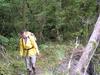 Reavis Valley Trail 109 - Tonto National Forest - Arizona - USA