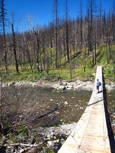 Red Eagle Lake Trail Story - Glacier - Montana - USA