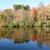 Reflections On Price Lake - North Carolina