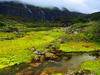 Repuk  Makalu  Barun  Valley  Nepal