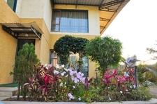 Resort Garden Area