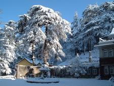 Fagu Ski Resort