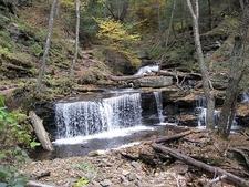 Ricketts Glen State Park - Trail Views - Pennsylvania