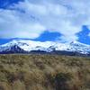 Ridge Walking Track - Tongariro National Park - New Zealand